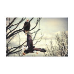 Eagle Watching Eagle Stretched Canvas Print