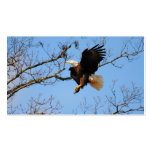 Eagle With Fish 2 Double-Sided Standard Business Cards (Pack Of 100)