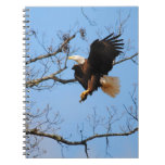 Eagle With Fish 2 Notebooks