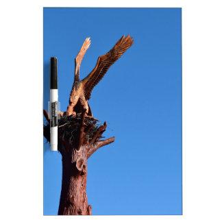 EAGLE WOOD CARVING GEORGE TOWN TASMANIA AUSTRALIA DRY ERASE WHITEBOARDS