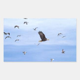 Eagle y el volar de las gaviotas rectangular altavoz