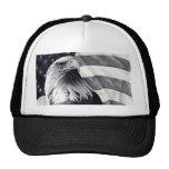 Eagle y gorra de la bandera