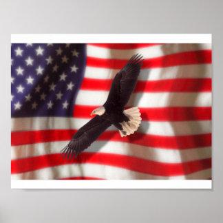 Eagle y poster de la bandera americana