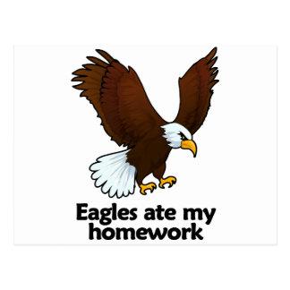 Eagles ate my homework postcard