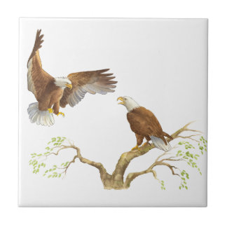 Eagles calvo majestuoso azulejo cuadrado pequeño