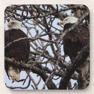 Eagles calvo vigilante posavasos