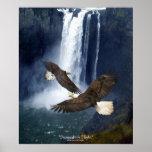 Eagles calvo y poster del arte de la fauna de la