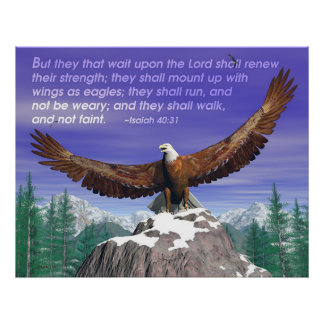 Eagles II Poster