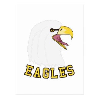 Eagles Mascot Postcard