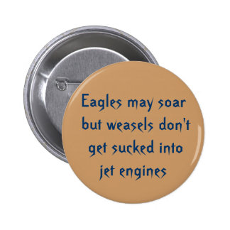Eagles may soar but weasels don't get sucked in... pinback button