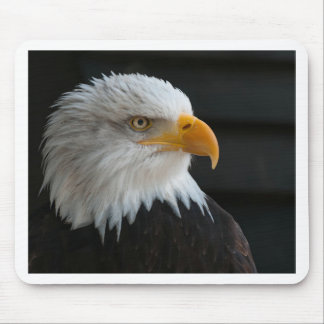 Eagles Mouse Pads