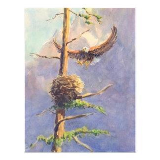 EAGLE'S NEST by SHARON SHARPE Full Color Flyer