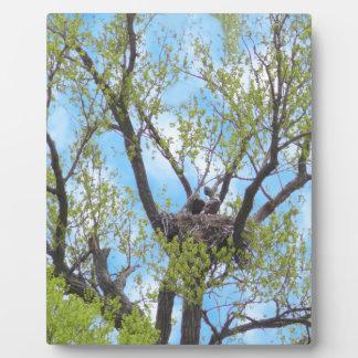 Eagles Nest Plaque