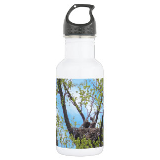 Eagles Nest Water Bottle