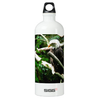 Eagles Nest Water Bottle