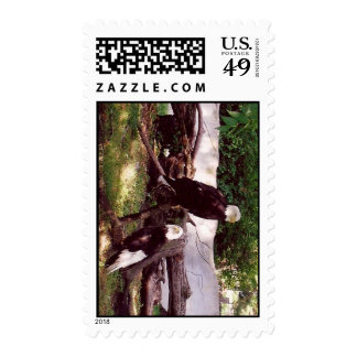 Eagles on a Branch Postage