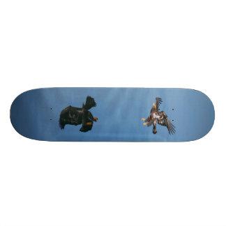 Eagle's Reflection Skateboard Decks