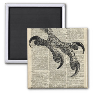 Eagle's Talon Claws Vintage Book Page Illustration 2 Inch Square Magnet