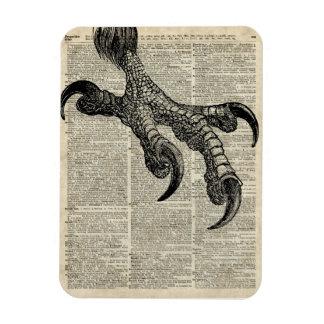 Eagle's Talon Claws Vintage Book Page Illustration Rectangular Photo Magnet