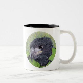 Eaglets on a mug