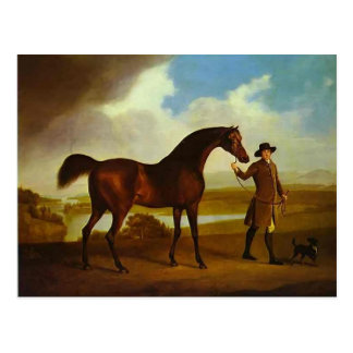 Earl Grosvenor's Bandy by George Stubbs Postcard