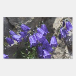 Earleaf bellflower (Campanula cochleariifolia) Rectangular Sticker