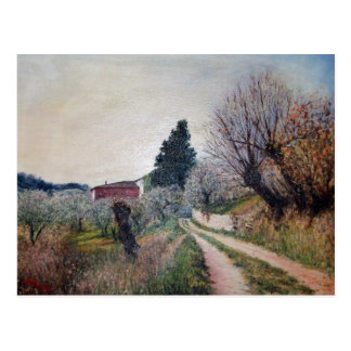 EARLIEST SPRING IN VERNALESE / Tuscany Landscape Postcard