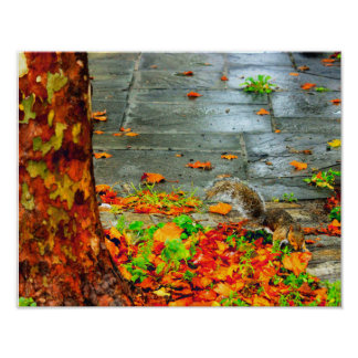 EARLY AUTUMN EVENING poster