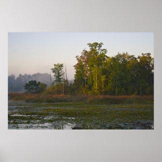 Early Autumn Sunlight print
