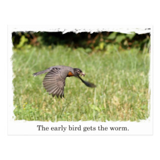 Early Bird Gets The Worm Post Card