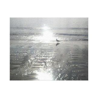 Early Bird on the Beach, Hilton Head, SC canvas