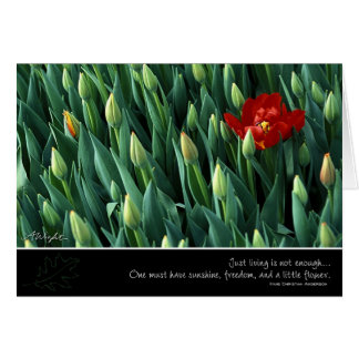 Early Bloomer, by Anna Wight Greeting Card