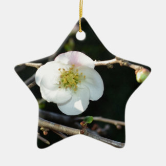 Early Bloomer Ceramic Ornament