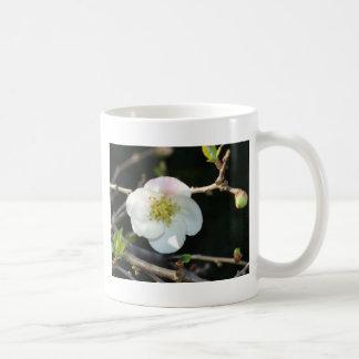 Early Bloomer Coffee Mug