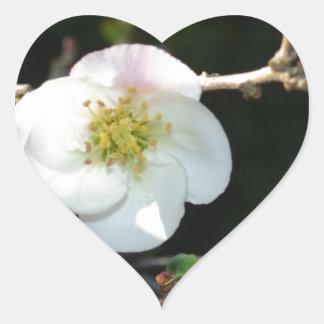 Early Bloomer Heart Sticker