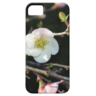 Early Bloomer iPhone SE/5/5s Case