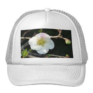 Early Bloomer Trucker Hat
