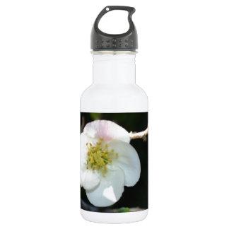 Early Bloomer Water Bottle
