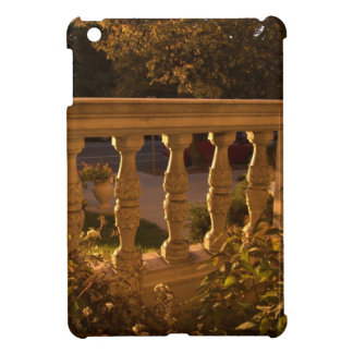 Early Evening iPad Mini Cases