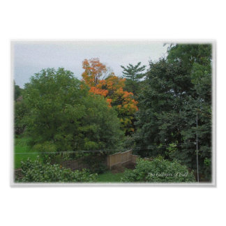 Early Fall - Brockville Ontario Canada Posters