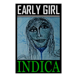 EARLY GIRL INDICA POSTER