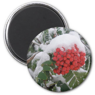 Early Montana Winter 2 Inch Round Magnet