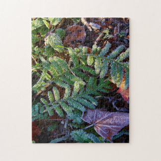 Early Morning Autumn Frost 2015 Jigsaw Puzzle