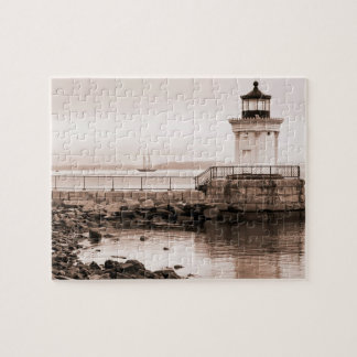 Early Morning Bug Light Puzzle