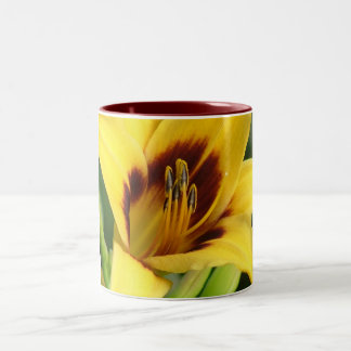 Early Morning by Nature Bug Two-Tone Coffee Mug
