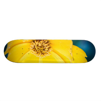 Early Morning Coreopsis Skate Board