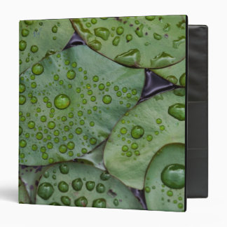 Early morning dewdrops on lily pads, Laurel Vinyl Binders