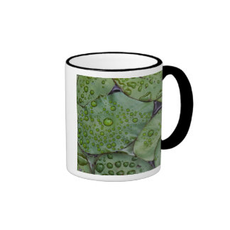 Early morning dewdrops on lily pads, Laurel Ringer Mug