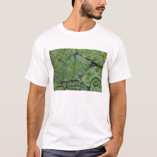 Early morning dewdrops on lily pads, Laurel T-Shirt