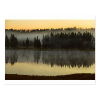 Early Morning Foggy Reflections Postcard